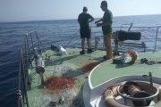 Retiran una red de pesca ilegal en una reserva del Parque Natural Cabo de Gata