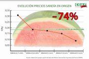 El precio de la sandía se desploma en el campo coincidiendo con la llegada del calor