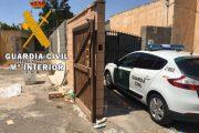 Cuatro detenidos por cultivar más de mil plantas de marihuana en Vícar
