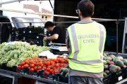 Once detenidos en Roquetas y Adra por hurto de fruta que 'colocaban' en mercadillos del Poniente