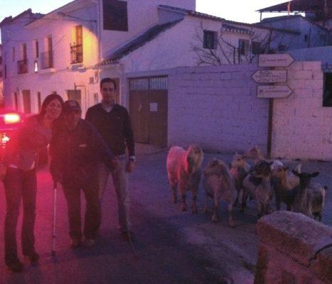 FOTO ROSARIO Y MIGUEL ÁNGEL Como las cabras