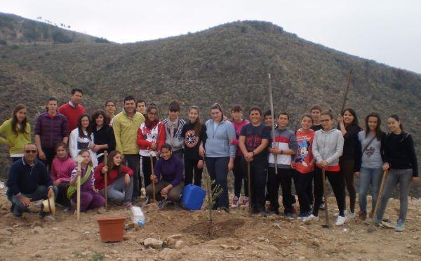 Plantación de árboles en Boquerón Chico
