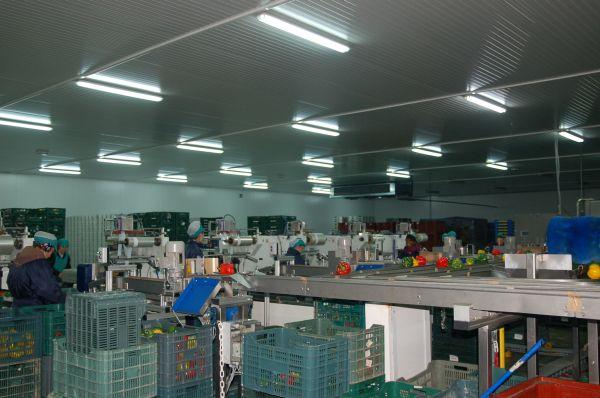 El Gobierno declara imprescindibles a los trabajadores de la agricultura, ganadería, pesca y alimentación