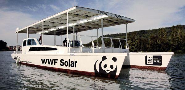 Catamarán WWF