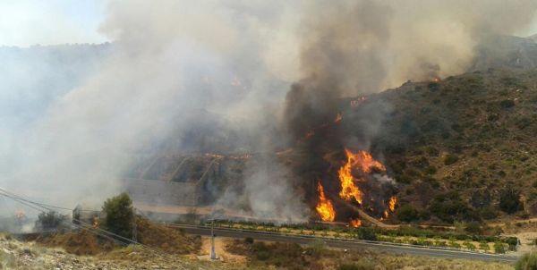 Detenido un vecino de Antas como presunto autor del incendio de Bédar
