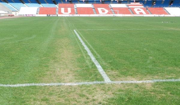 El terreno de juego del campo del Almería está cada día peor por culpa de un hongo que ataca al césped