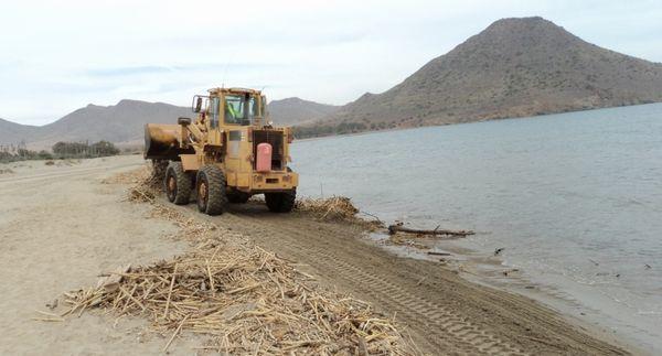 limpieza playas c. gata