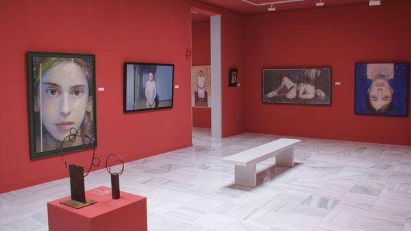 Sala del Museo Casa Ibañez