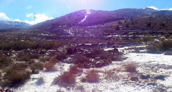 Nieve Fondón