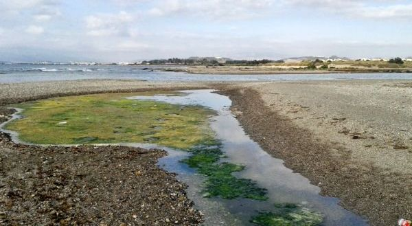 Playas Vera contaminacion