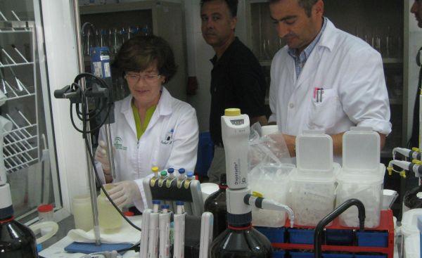El Gobierno autoriza la fijación de precios públicos de los laboratorios agroalimentarios y pesqueros