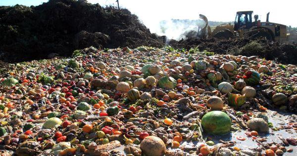 comida desperdiciada