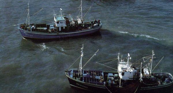 pesca de atun rojo