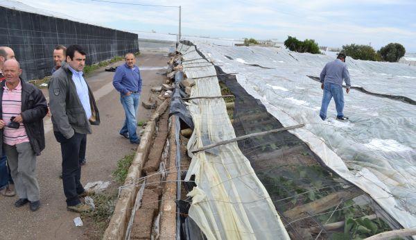 Andrés Góngora visita invernaderos dañados
