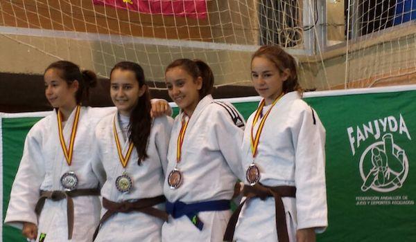 Copa de España de Judo