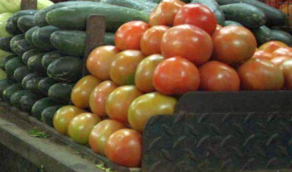 Calabacín y tomate