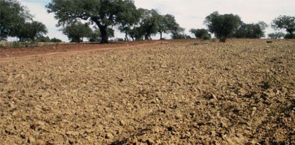 foto upa sequía