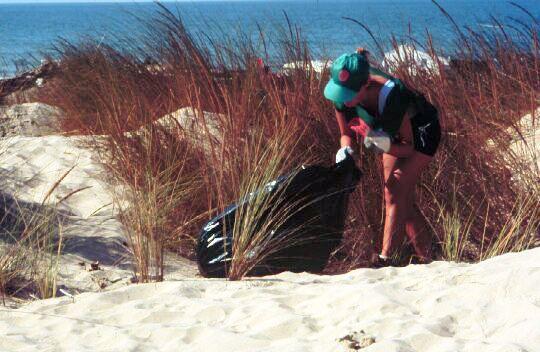 Acción litoral