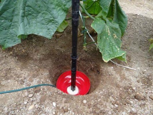Instalación del Fullstop en el cultivo