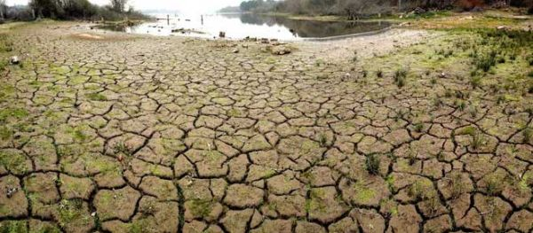 """UPA ve con buenos ojos la ley contra la sequía y exige al Gobierno """"urgencia y presupuesto"""""""