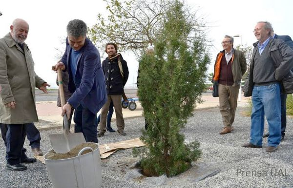 Plantación sabina UAL