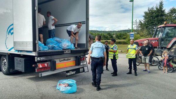 Foto UPA ataque a un camión en Normandía