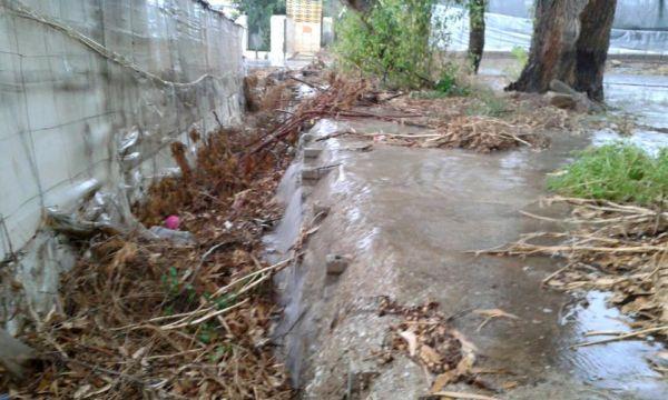 invernadero inundado en La Cañada 2 (Foto publicada por Coag)