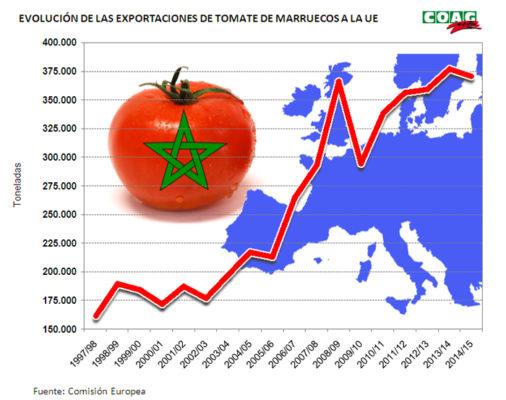 GRÁFICO EXPORTACIONES TOMATE MARRUECOS A UE
