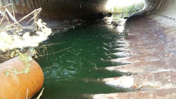 La Mesa del Agua de Almería pide más recursos en desalación, trasvases y reutilización