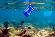 Una campaña en redes sociales incide en el daño ambiental de los plásticos en las playas
