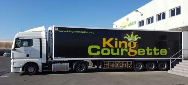 king-courgette-2