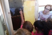 Las abejas, nuevas compañeras de curso de los escolares del CEIP de María