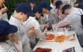 Cajamar fomenta un nuevo programa de alimentación saludable y sostenible