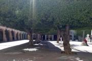 Sobre la reforma de la Plaza Vieja