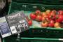Denuncian presunto fraude por vender tomates de Portugal junto al anuncio de origen y calidad de Almería