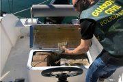Desarticulan una organización criminal dedicada al tráfico de drogas en La Manga y detienen a su líder en Almería