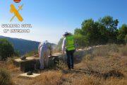 Un apicultor de Sorbas recupera en Níjar parte de sus colmenas sustraídas gracias a un GPS instalado dentro de una de ellas