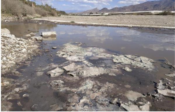 Ecologistas en Acción lleva a la Fiscalía los vertidos de la cítrica de Gádor al cauce del río Andarax