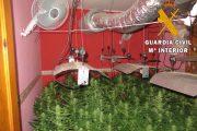 Detenidos dos jóvenes con 212 plantas de marihuana en una vivienda en Roquetas de Mar