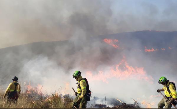 Plan Infoca trabaja en un incendio en Berja