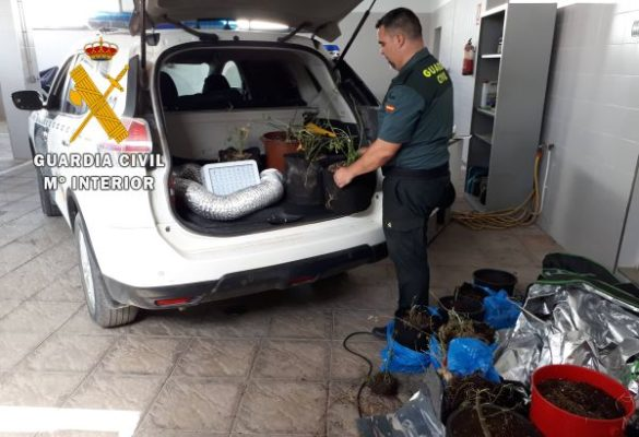 Marihuana, Guardia Civil