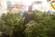 Descubren un 'narcoedificio' dedicado al cultivo de marihuana en Roquetas