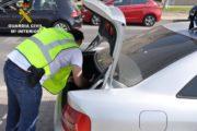Detenida una mujer que transportaba 148 plantas de marihuana en su vehículo
