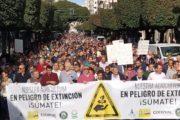 Decenas de miles de agricultores participan en la manifestación y el paro agrario en Almería