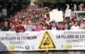 Concentraciones de agricultores 'en defensa del campo' amenazan al tráfico este miércoles en accesos a Almería por Levante y Poniente