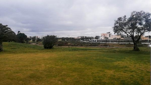 PARCELA EL TOYO