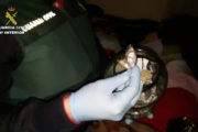 Rescatan a una mujer obligada a prostituirse y a vender droga en una vivienda de Roquetas de Mar