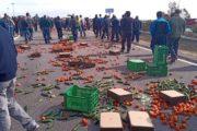 Los agricultores cortan la autovía del Mediterráneo en El Ejido para advertir que están
