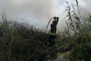 Extinguido un incendio en Las Albuferas de Adra