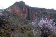 La Cueva de Nieles